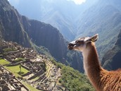 View From The Village Of Machu Picchu