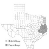 Location in Texas