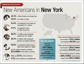 NEW AMERICANS IN NEW YORK