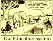 Traditional Educational Experience is Outdated