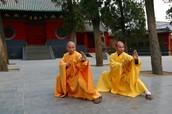 Do not enroll in Master Wang's School of KUNGFU