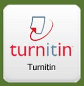 Turn It In