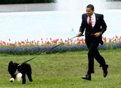 Barack Obama with his dog