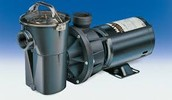 Hayward pump increases dependability and performance