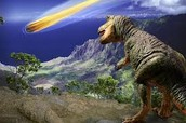 Dinosaurs died because of an giant asteroid crashed landed on earth. Specifically in Mexico. Where the dinosaur population was large. About 65 million years ago all dinosaurs were gone…