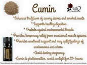 Free Cumin!