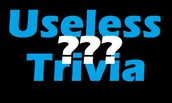 Trivia Question (first to email Kerry wins a prize)