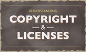 Copyright License