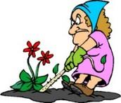 Trabajar de Jardín