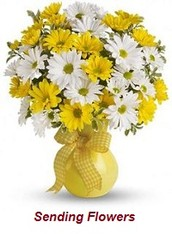 Seasonal Sending Flowers Can Bring Smile On The Lips Of Your Loved Ones