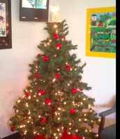 It's beginning to look a lot like Christmas...at Frank Elementary!:)