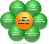 Culture Check