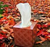 Autumn Sniffles
