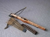 Early Chinese Weapons