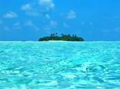 Clearsea Sea