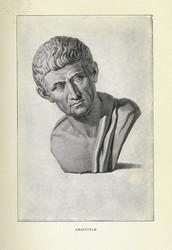 Aristole