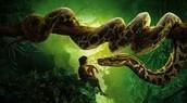 Mowgli frente a Kaa