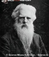 Edward Muyibridge