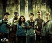 my  favorite book of the year is the maze runner