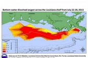 What Causes the Dead Zone in the Gulf of Mexico?