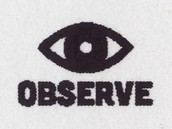 Observe and Apply