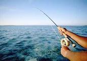 Boost Fishing Trip