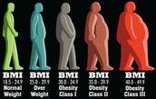 Visual Description of Obesity