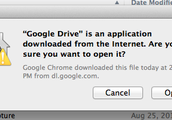 Click Open when this dialog box appears.