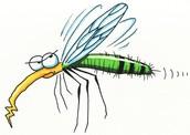Bug Off Spray