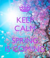 Spring Is Just Around The Corner!