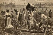 Facts on Slavery from 1820-1860