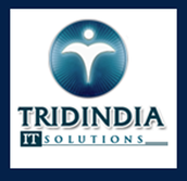 Tiitsolutions a Globle IT Company