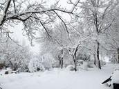 איך נוצר שלג ?