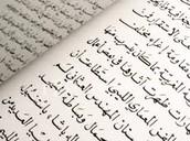 Language in Iraq