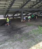1st Grade Earth Day Clean Up