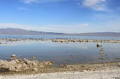 Salton Sea - Current