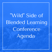 Agenda for the Conference
