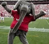 #1 The University of Alabama