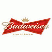 Budweiser Super Bowl XLVIII Commercial-'A Hero's Welcome'