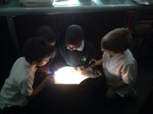 A crew of boys sharing a book and their lights.