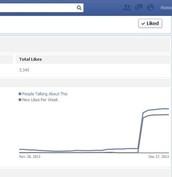 A sudden spike in followers, then a flatline