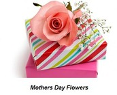 Quick Advice For Greatest Choices For Mothers Day Flowers