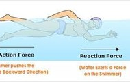 Law 3-States that every action force there is an reaction force.