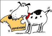 Homework Policies/Tuesday Folders