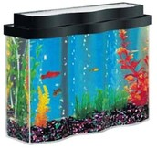 Home Appearance with Fish Aquariums