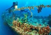 Artifical reefs
