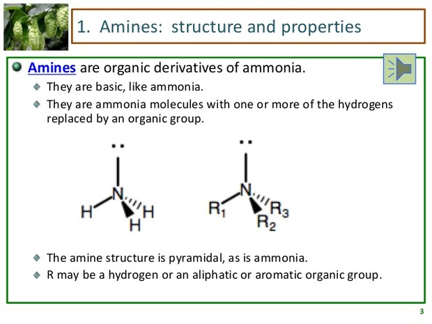 Organic Chemistry 2 | Smore Newsletters for Education