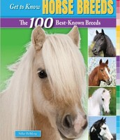 Get to Know Horse Breeds