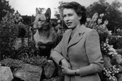 The Queen when she was 24 sitting with a dog