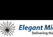 Elegant Microweb - IT solutions & Services